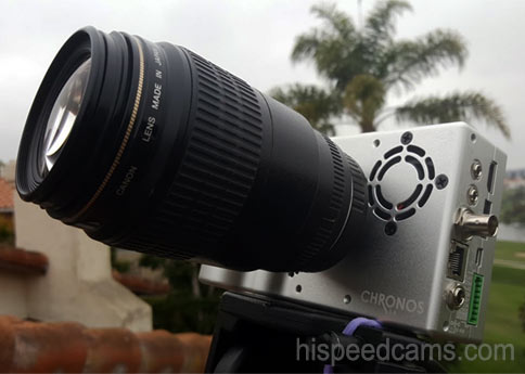 Chronos 1.4 Silver with the Canon 100mm USM Macro lens