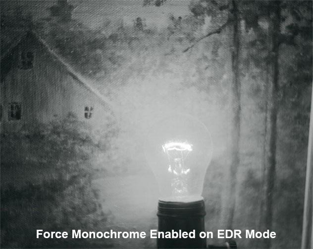 edgertronic EDRMono