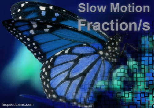 Slow Motion Fractions